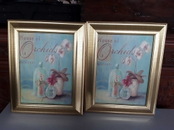 A pair of flower picture with gilt frames